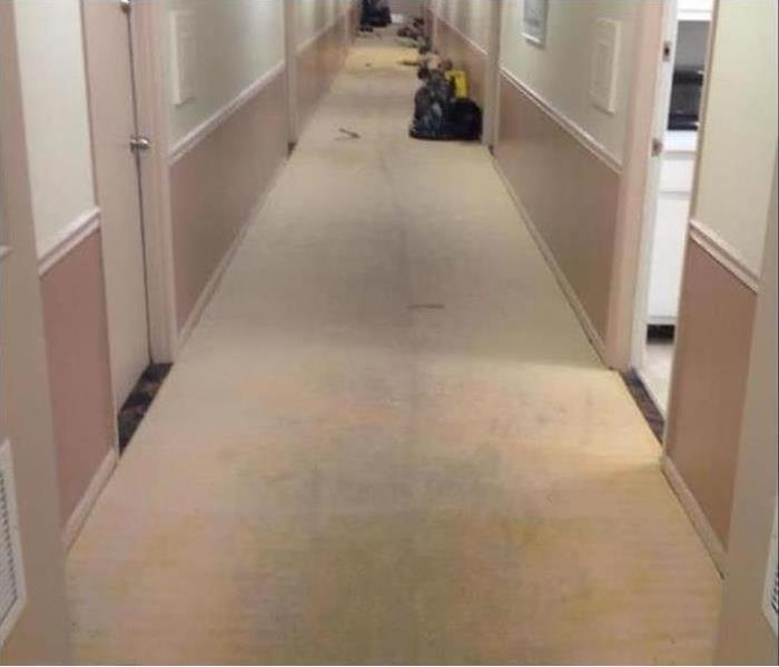 Commercial water damage – Fort Collins Office Building Before