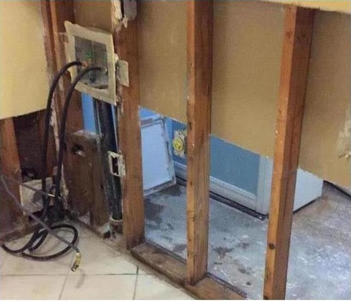 Mold Damage – Fort Collins Laundry Room After