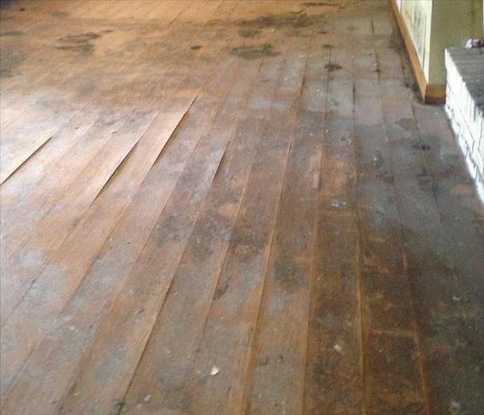 Storm Damaged Flooring in Fort Collins