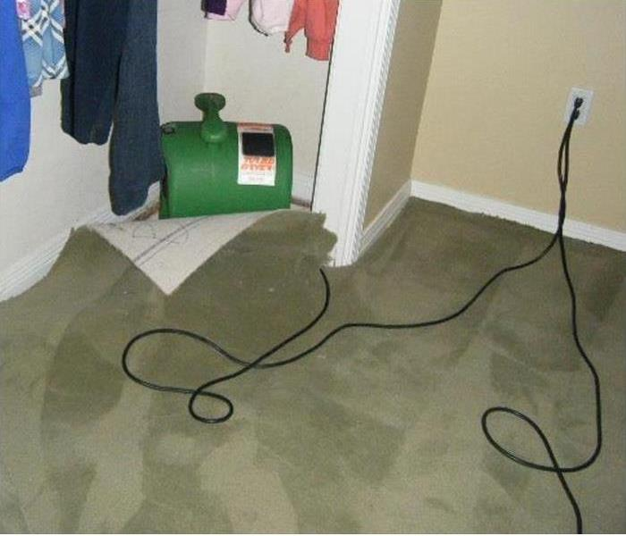Water Damage How to Deal with Wet Carpets after Water Damage in Ft. Collins