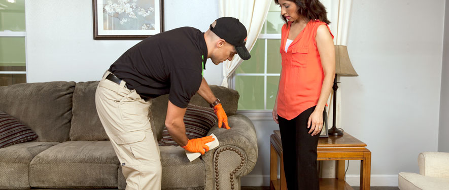 Fort Collins, CO carpet upholstery cleaning