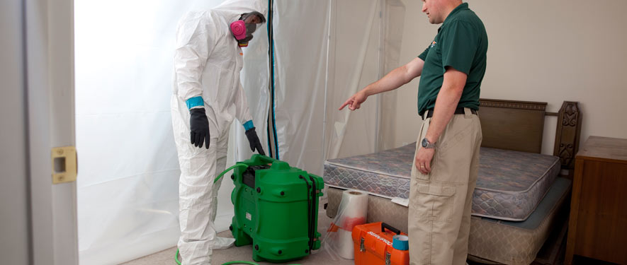 Fort Collins, CO mold removal process
